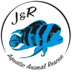 JR Aquatic Animal Rescue